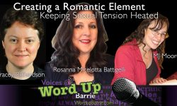 Romance writers and author instructors panel online